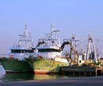 El sector pesquero español rubrica el primer acuerdo de prevención de riesgos laborales.