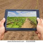 Cómo reducir los accidentes laborales en el sector agrario a través de la gestión de la diversidad.