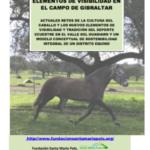 LA CULTURA DEL CABALLO. ELEMENTOS DE VISIBILIDAD EN EL CAMPO DE GIBRALTAR