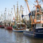 Inversión para mejorar la seguridad en puertos pesqueros de Huelva, Cádiz y Almería.