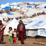 CEA y el Comité español de ACNUR sellan su alianza para trabajar por los refugiados y la población desplazada