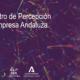 BARÓMETRO DE PERCEPCIÓN DE LA EMPRESA ANDALUZA (2ª OLEADA)