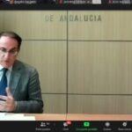 Órganos de Gobierno de CEA: previsiones económicas para Andalucía, agilización de la vacunación y apoyo a la Ciudad Autónoma de Ceuta